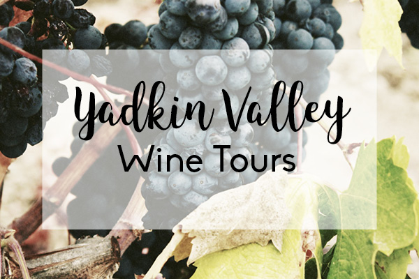 Yadkin Valley Wine Tours