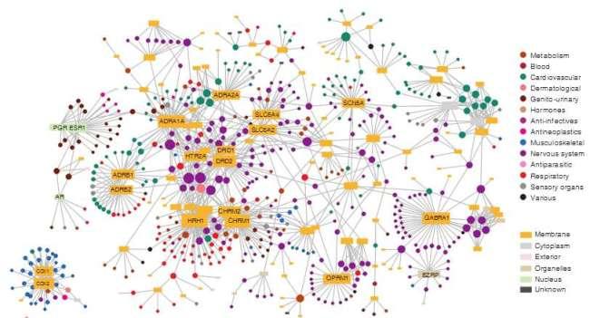 Figure : Drug target network (Yildirim et al. (2007) Computational Biology 25(10): 1119-1126)