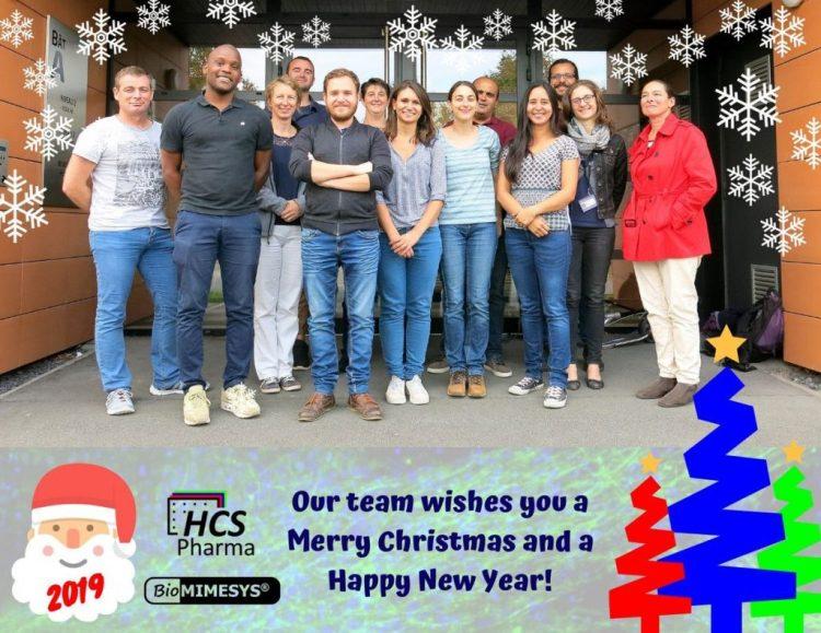 Meilleur Voeux pour 2019 ! - Best wishes for 2019!