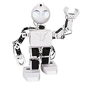 JD robot