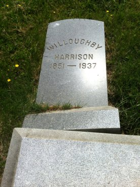 Willoughby Harrison
