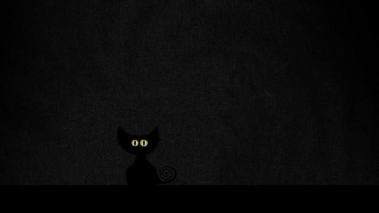 black cat wallpaper 2