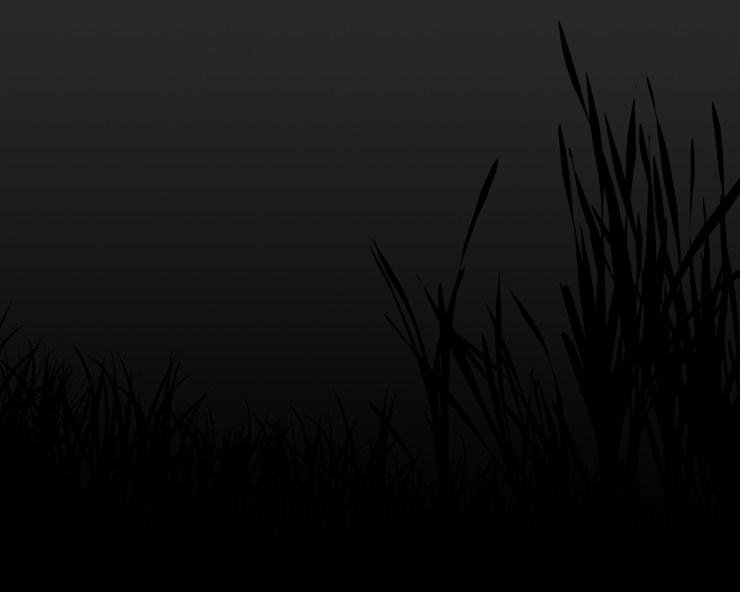 black grass wallpaper 1280×1024