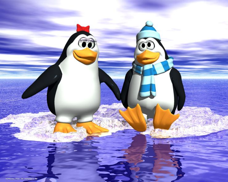 cartoon penguin wallpaper