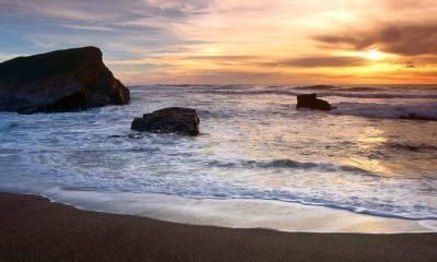 free beach sunset wallpaper