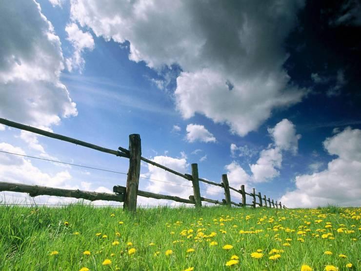 HD Spring desktop wallpaper desktop 1600p