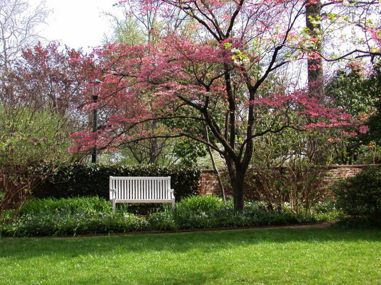 HD Spring landscapes wallpaper desktop 1024p