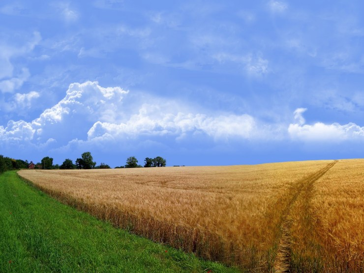 Landscape summer photography windows desktop 1600p