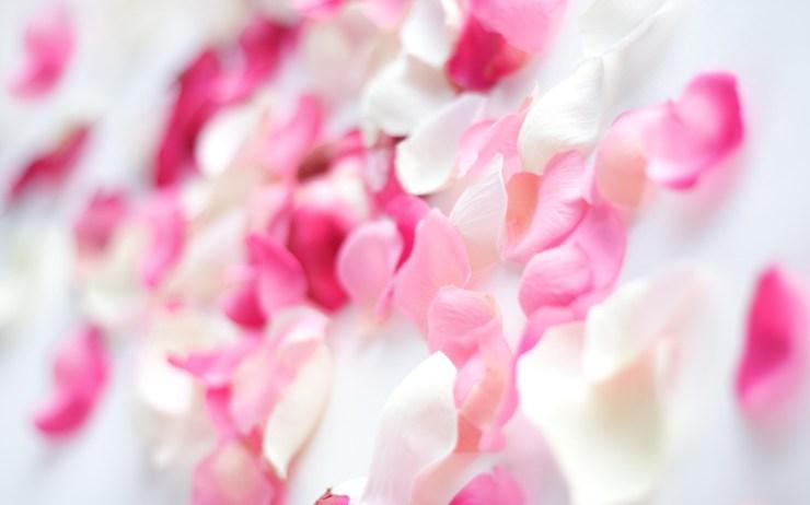 pink flowered wallpaper