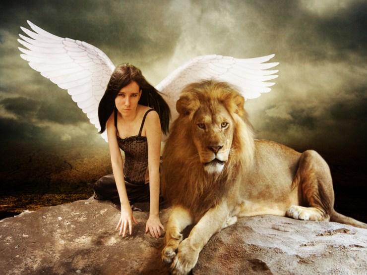 the lion wallpaper