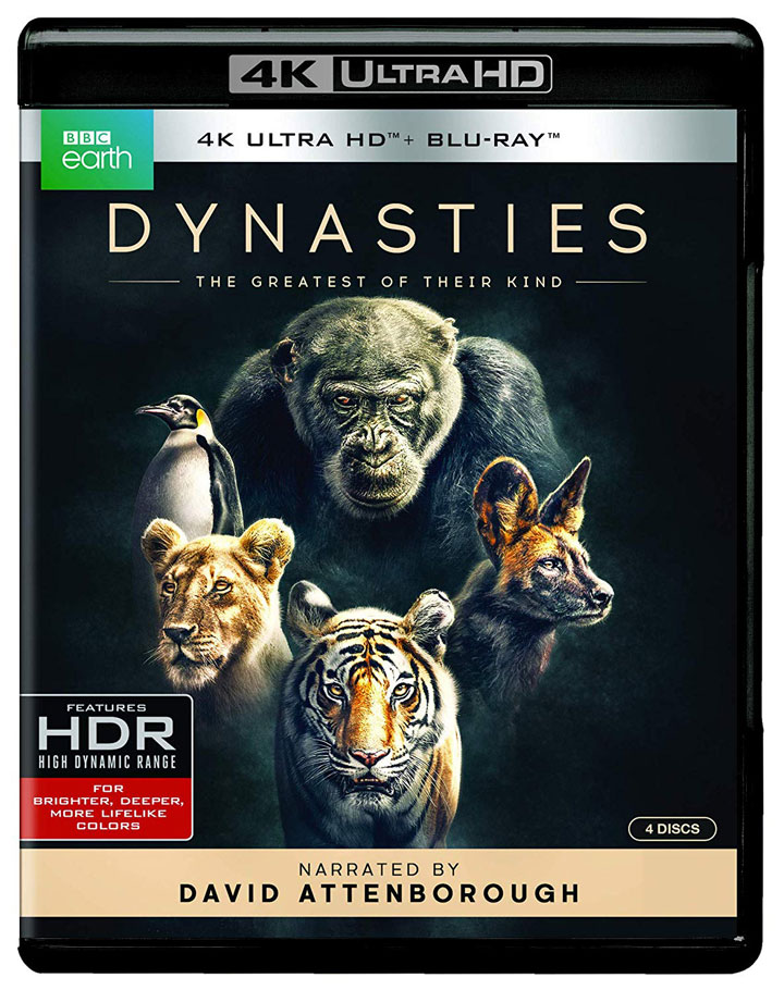 BBC Earths Dynasties Coming to 4k Bluray  DVD  HD Report