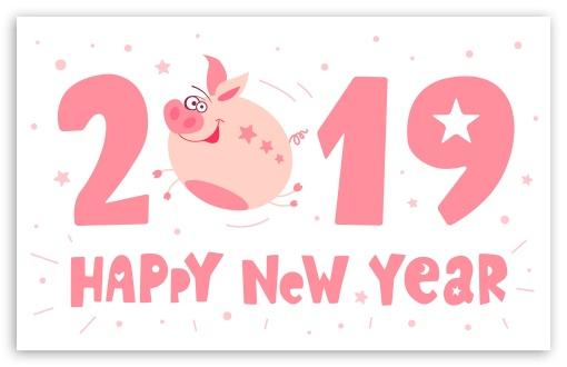Hd Cute Animal Wallpapers 1080p 2019 Happy New Pig Year 4k Hd Desktop Wallpaper For 4k