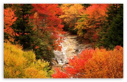 Fall Wallpaper 1440p Blue Ridge Parkway North Carolina Autumn 4k Hd Desktop