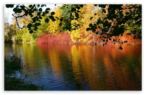Fall High Definition Wallpapers Fall Reflexion 4k Hd Desktop Wallpaper For 4k Ultra Hd Tv