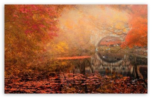 Autumn Fall Wallpaper 1600x900 Golden Fall 4k Hd Desktop Wallpaper For Wide Amp Ultra
