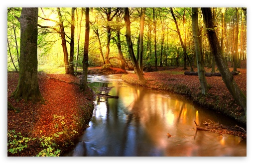 Fall Wallpaper 1440p Impressive Autumn Landscape Ultra Hd Desktop Background