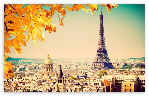 Uhd Wallpapers Fall Paris Autumn Tree 4k Hd Desktop Wallpaper For 4k Ultra