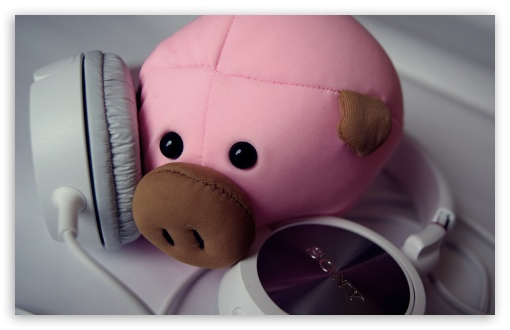 Funny Wallpapers For Iphone 3gs Pig And Headphones 4k Hd Desktop Wallpaper For 4k Ultra Hd