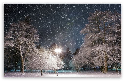 Snow Falling At Night Wallpaper Snow At Night 4k Hd Desktop Wallpaper For 4k Ultra Hd Tv