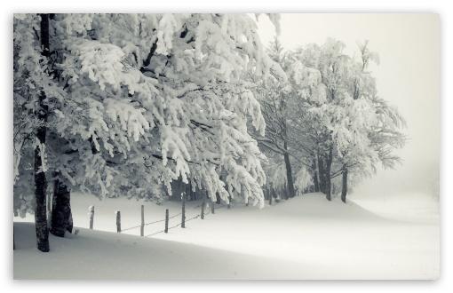 Snow Falling Wallpaper For Ipad Snowy Landscape Ultra Hd Desktop Background Wallpaper For