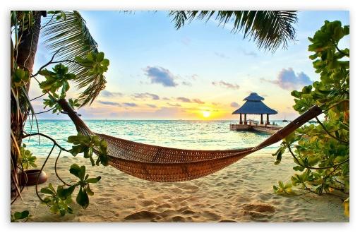 Oasis Wallpaper Iphone 5 Tropical Paradise 4k Hd Desktop Wallpaper For 4k Ultra Hd