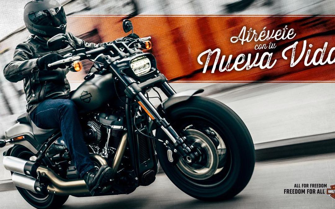ATRÉVETE CON TU NUEVA VIDA: pásate a una Harley antes del 31 de marzo
