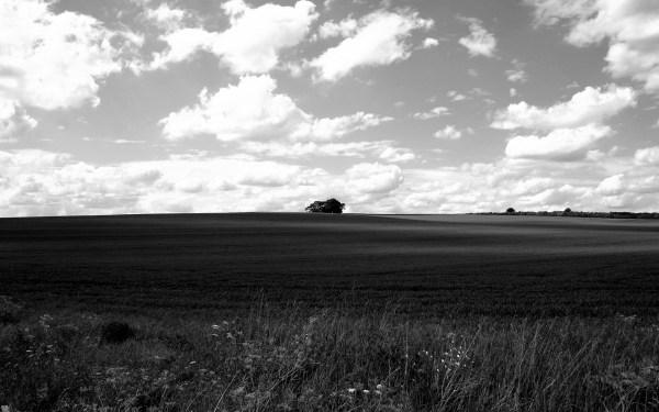 Black And White Landscape 15 Free Hd Wallpaper