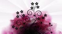 Pink And Black Wallpaper Designs 5 Cool Hd Wallpaper ...