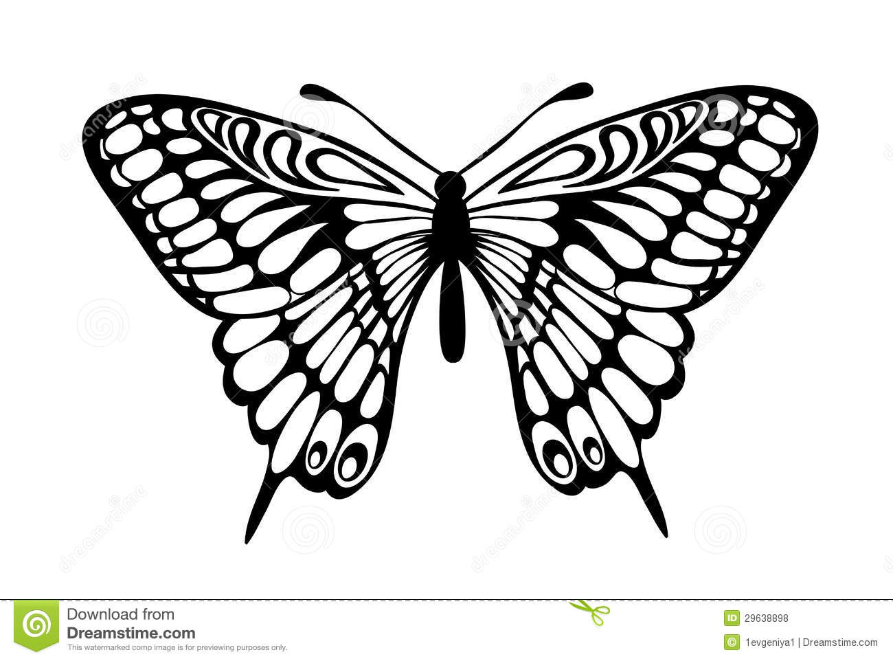 Black And White Images Of Butterflies 23 Free Hd Wallpaper