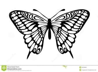 butterflies background hd hdblackwallpaper