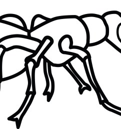 free clipart of an ant [ 4000 x 1953 Pixel ]