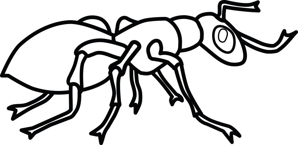 medium resolution of free clipart of an ant