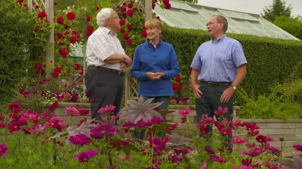 The Beechgrove Garden episode 12 2018 - How to train step ...