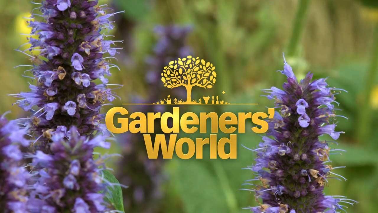 Gardeners' World 2021 episode 26