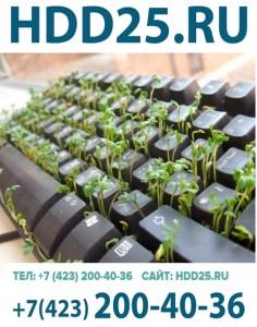 Ремонт компьютеров и ноутбуков Владивосток