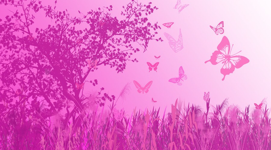 Good Morning Cute Wallpaper Hd Butterfly Hd Wallpapers Pink Hd Desktop Wallpapers 4k Hd