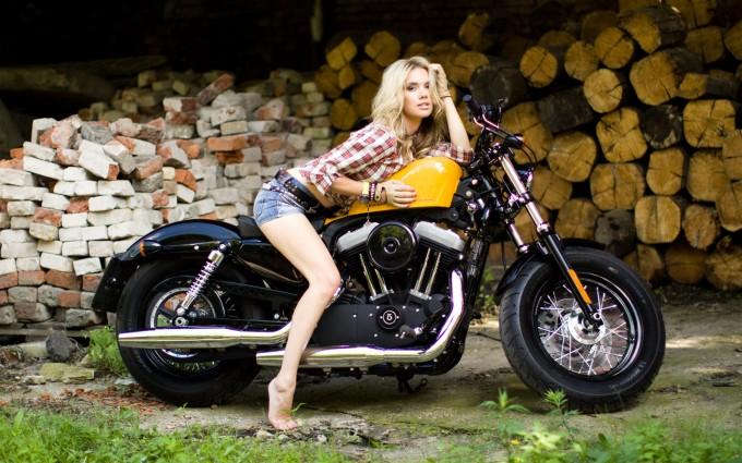 Harley Davidson Forty Eight Hd Wallpaper Wallpapers Harley Davidson Hd Desktop Wallpapers 4k Hd