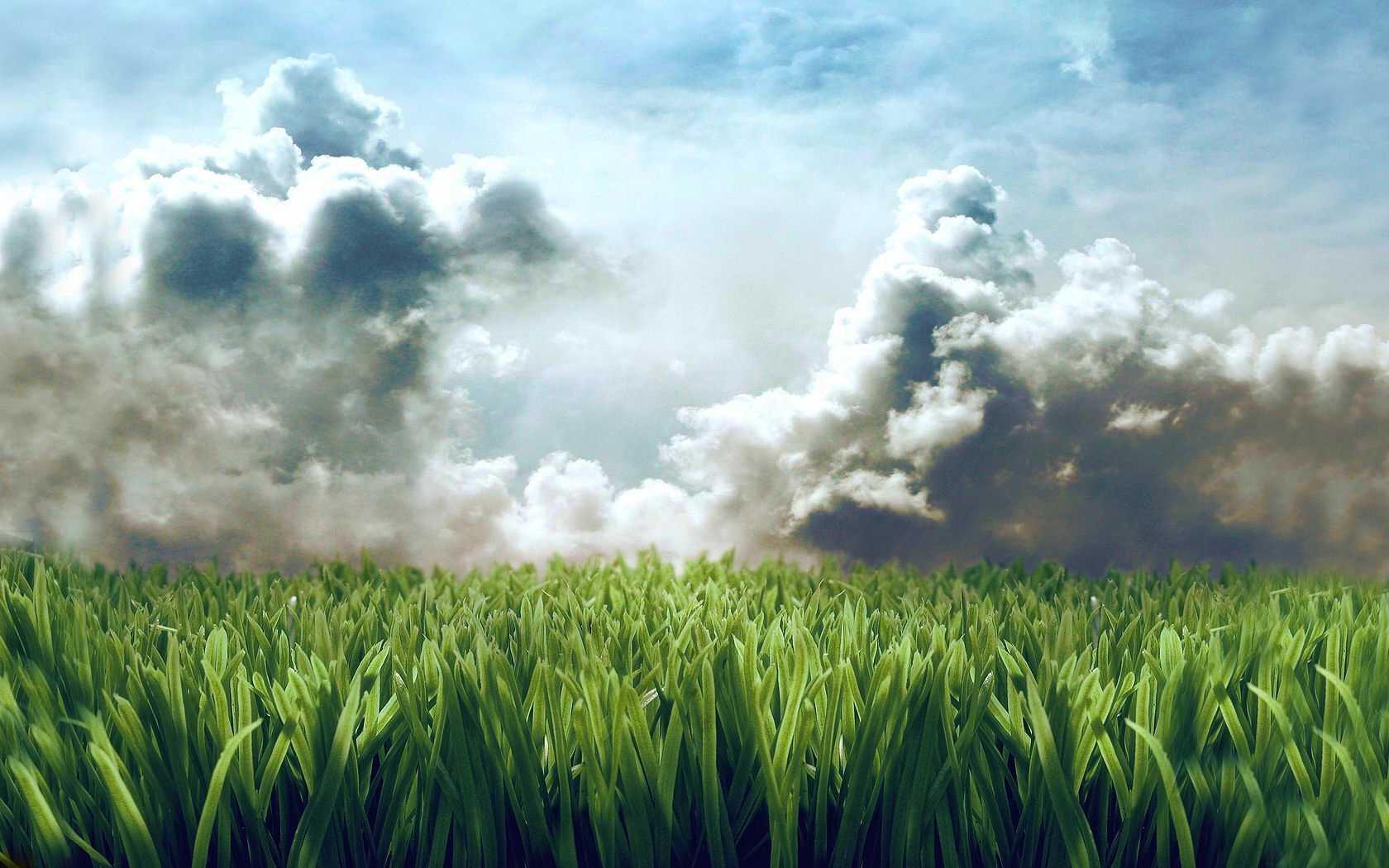 Cute Animated Moving Wallpapers For Desktop Grass Wallpaper Clouds Hd Desktop Wallpapers 4k Hd