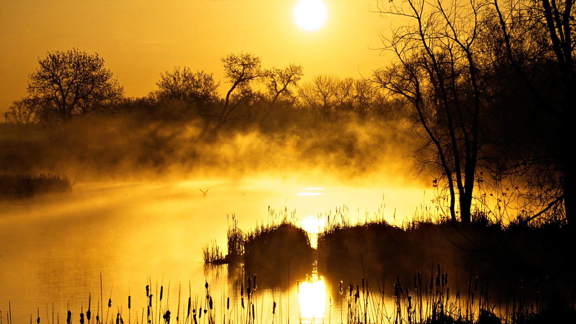 Fall Woodsy Pc Wallpaper Lake Wallpaper Mist Hd Desktop Wallpapers 4k Hd