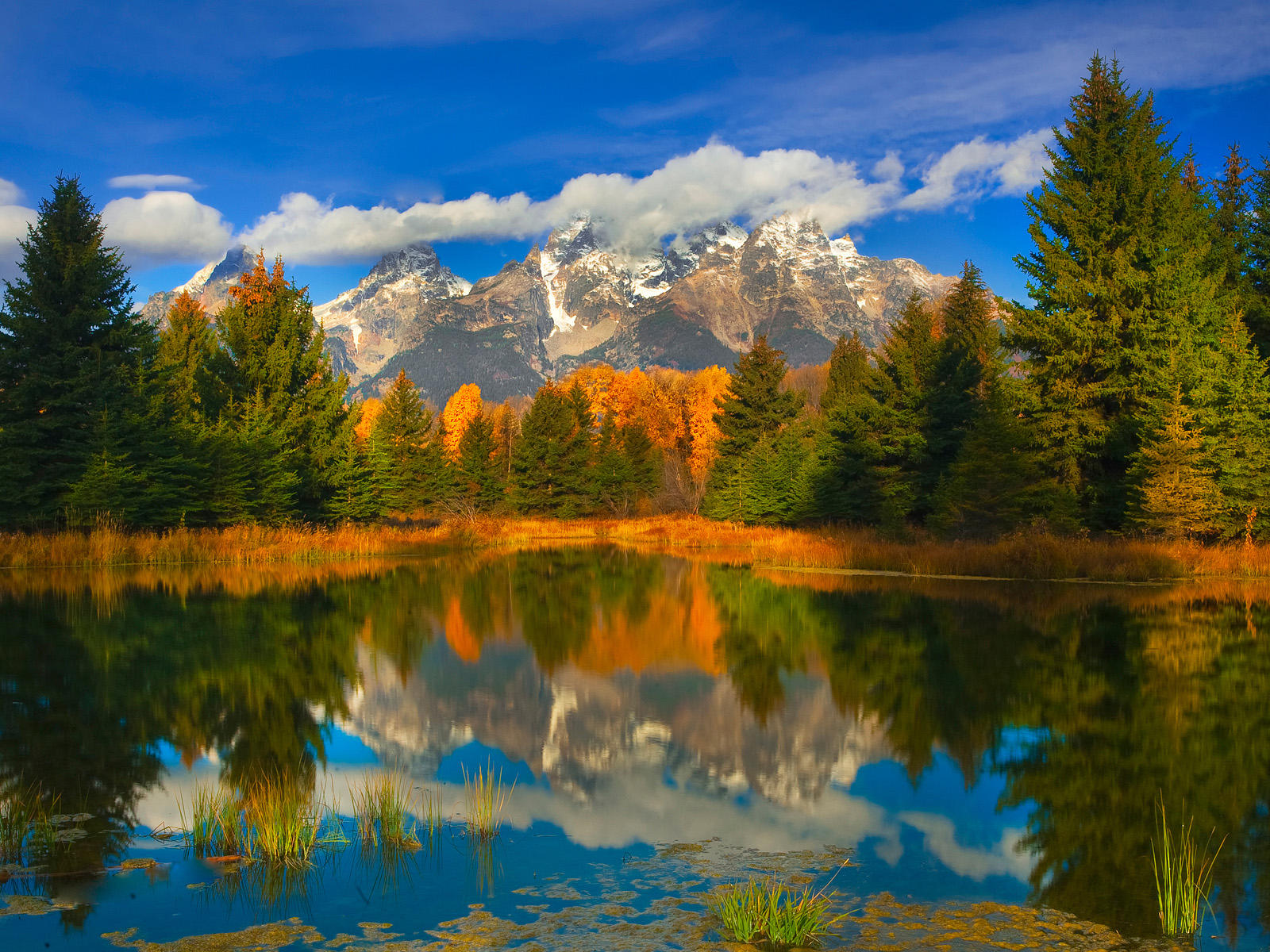 Fall Colors Wallpaper New England Wyoming Images Hd Desktop Wallpapers 4k Hd