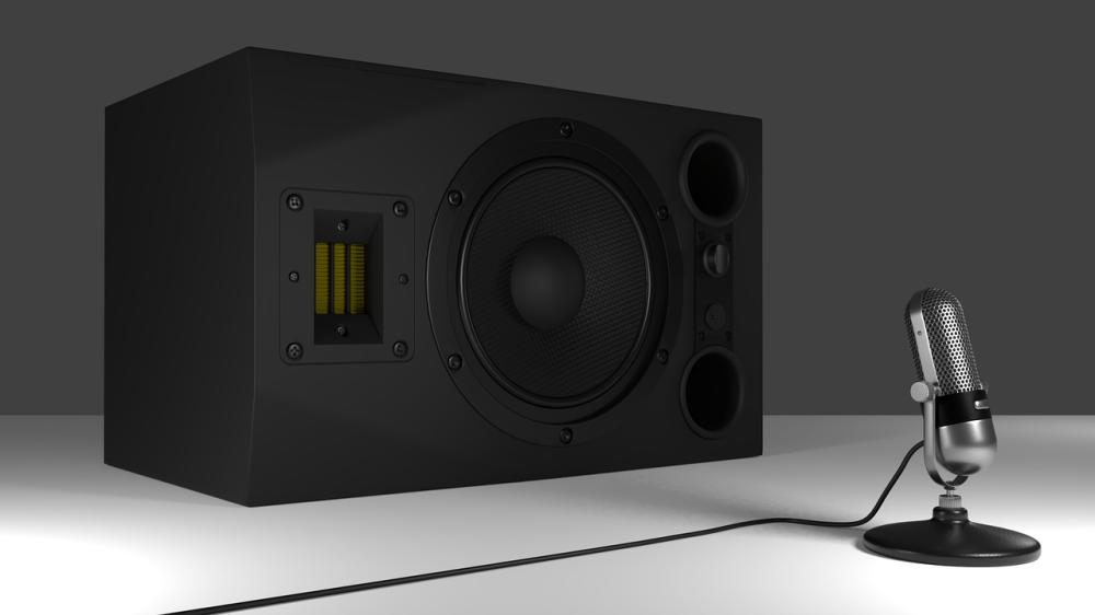 medium resolution of check speaker wires with multimeter