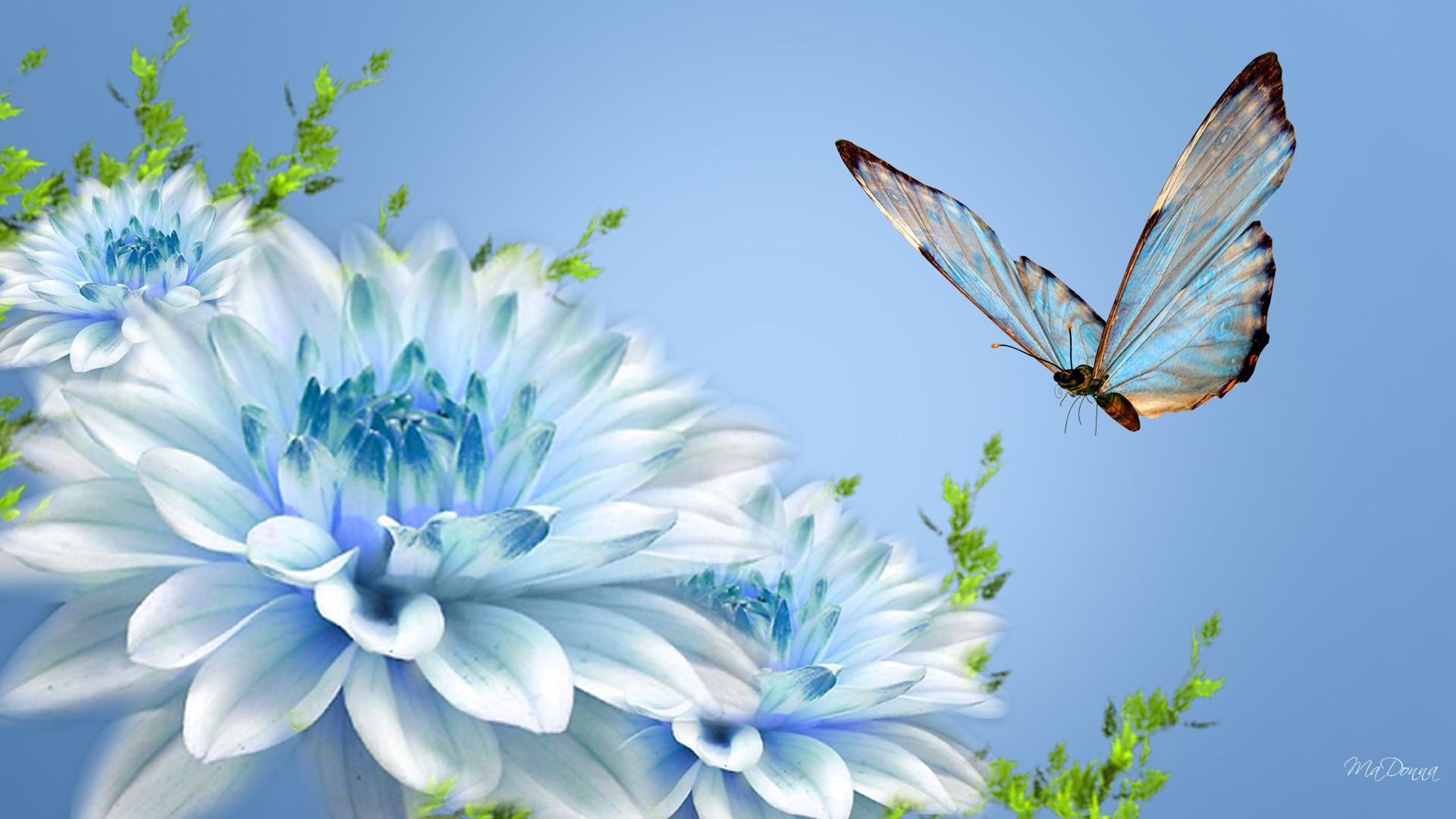Www 3d Flower Wallpaper Com Blue Flowers In Spring 23 Free Wallpaper