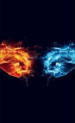 fire dragon hd desktop wallpapers mobile