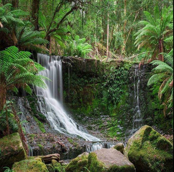 Water Fall Hd Wallpaper 4k Tropical Waterfall Images Hd Wallpaper