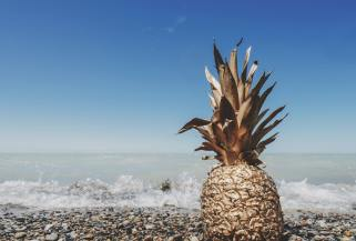 beach pineapple wallpapers hd heigh resolation