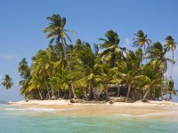 island palm trees hut sand 1920x1080