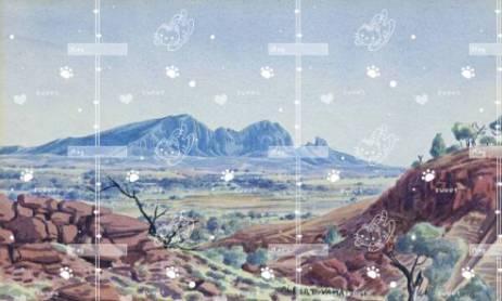 palm tree on beach at sand 1920x1080