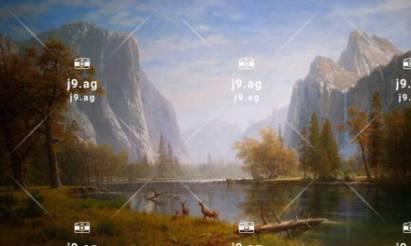 palm trees light sunset night sea 1920x1080