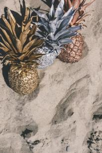 pineapple wallpapers at beach photography