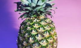 singl pineapple wallpapers